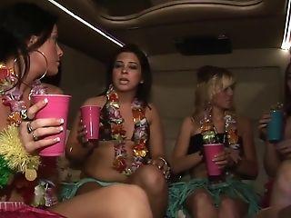 Best Pornographic Star In Incredible Brazilian, Blonde Hump Movie